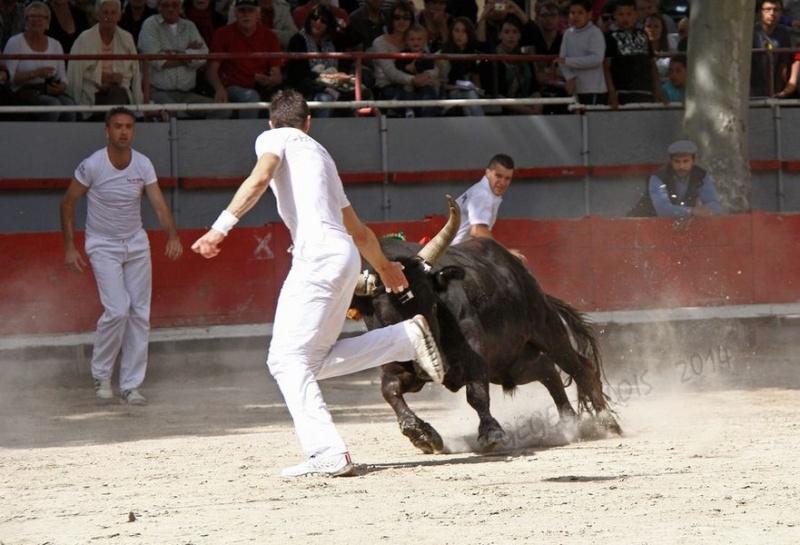 6° Trophée Louis NICOLLIN - Marsillargues - 11-05-2014 Img_0013