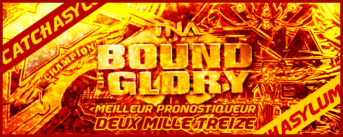 [Compétition] Un main event inter-brand aux Survivor Series ?  Bfg10