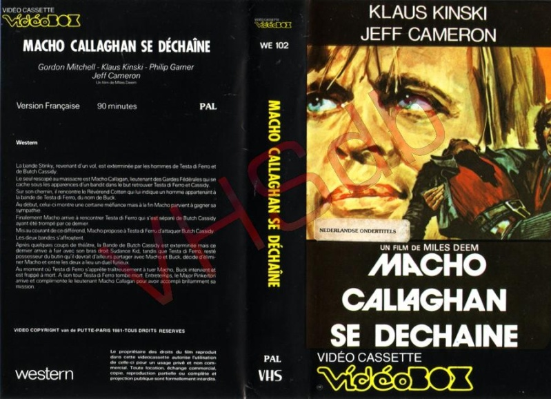 Macho Callaghan se déchaîne. Adios Companeros. Giù la testa... hombre. 1971. Demofilo Fidani. 5p10
