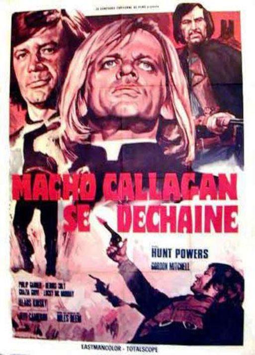 Macho Callaghan se déchaîne. Adios Companeros. Giù la testa... hombre. 1971. Demofilo Fidani. En146110