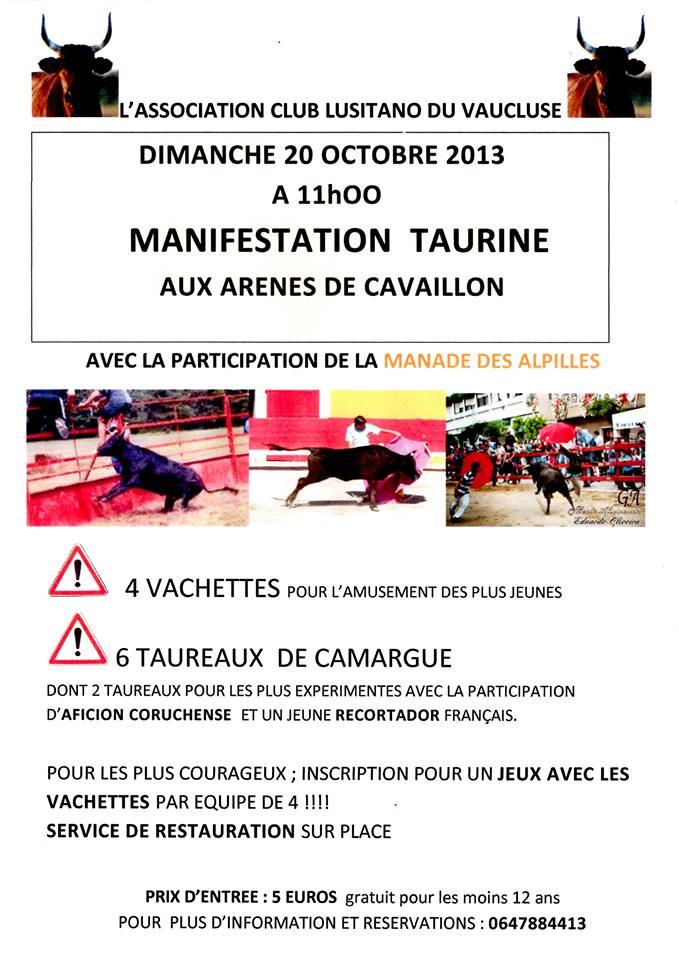 Journée taurine à Cavaillon le 20 octobre Afiche10