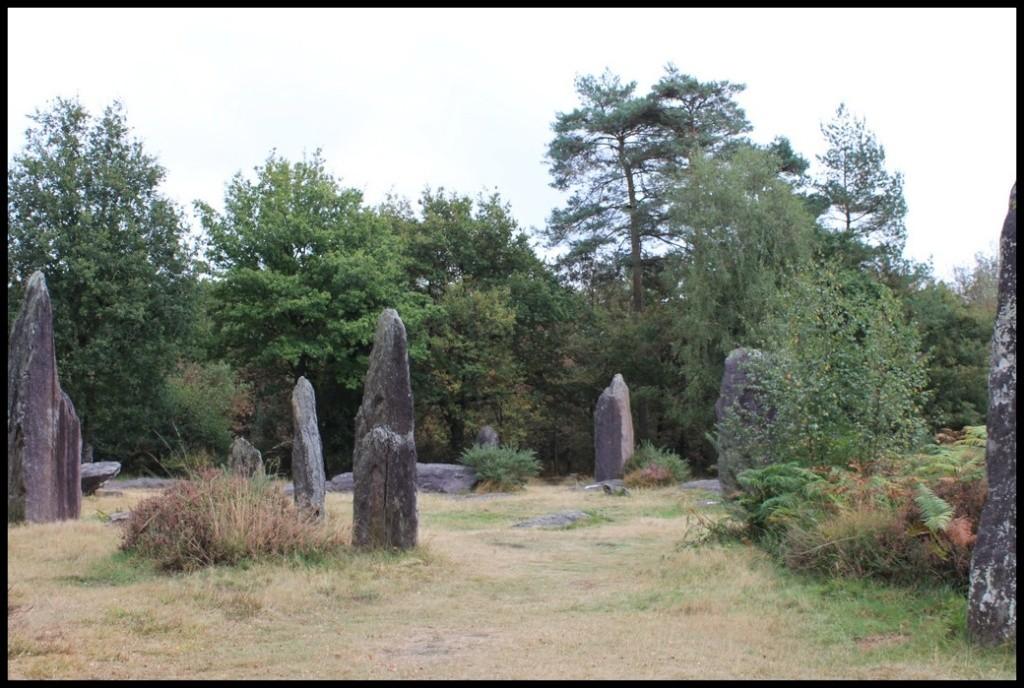 3ème Sortie des Druides avec les minis de l' ABVA ! Img_9651