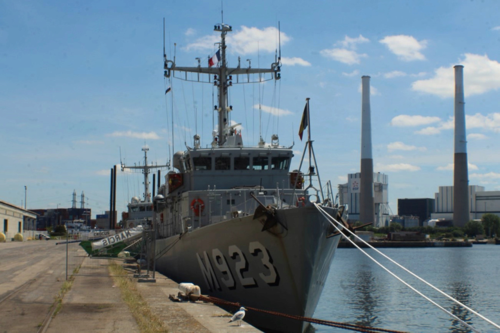 M923 Narcis - Page 17 Img_9557