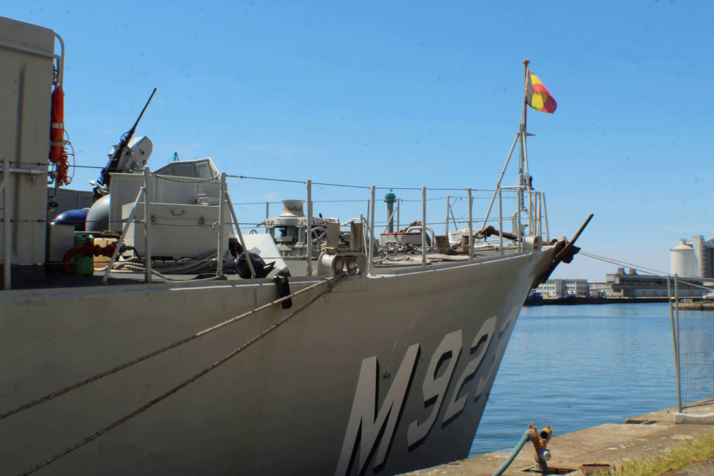 M923 Narcis - Page 17 Img_9559