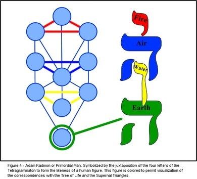 Nastanak čoveka i religija Treeof10
