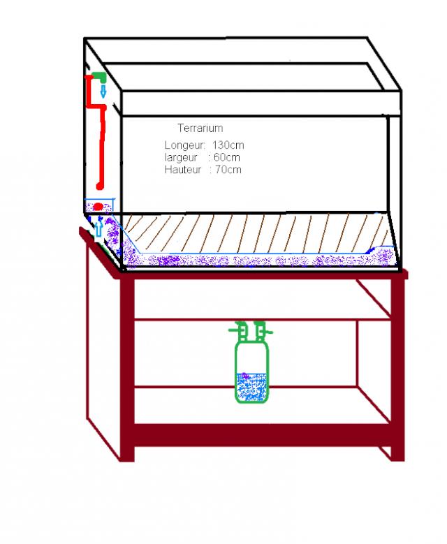 besoin d'aide(partie aquatique)pour terrarium dendrobates Copie_11