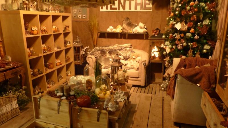 Décorations de Noël dans une jardinerie  P1190245