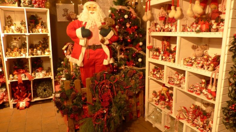 Décorations de Noël dans une jardinerie  P1190252