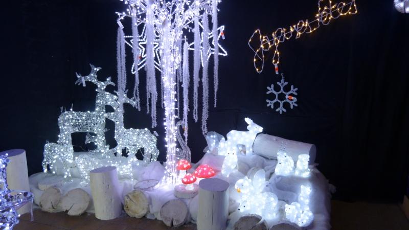 Décorations de Noël dans une jardinerie  P1190254