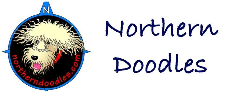 Northern Doodles