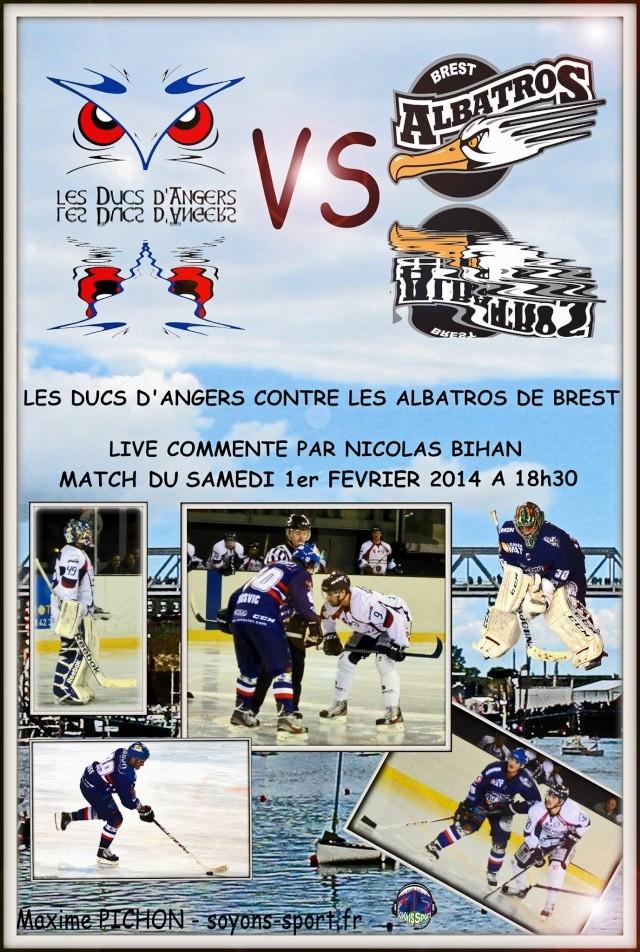 Ligue Magnus : 24e Journée : Angers - Brest Du 01/02/2014 Angers11