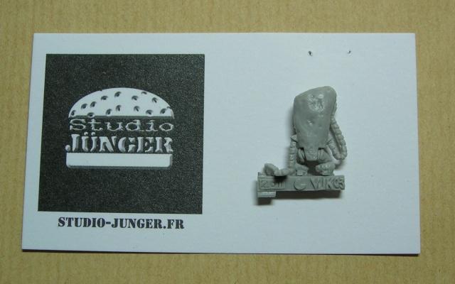 """K-Zimodo,Slam & Pi-Nutts,Karabidae MKIII... """"Studio Junger"""". Dscn6516"""
