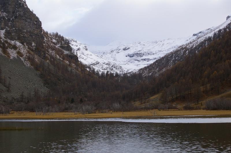 Les Alpes de Haute Provence, Barcelonnette, parc du mercantour 14_nov10