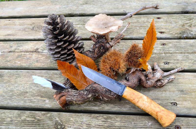 mes couteaux Dsc_0024