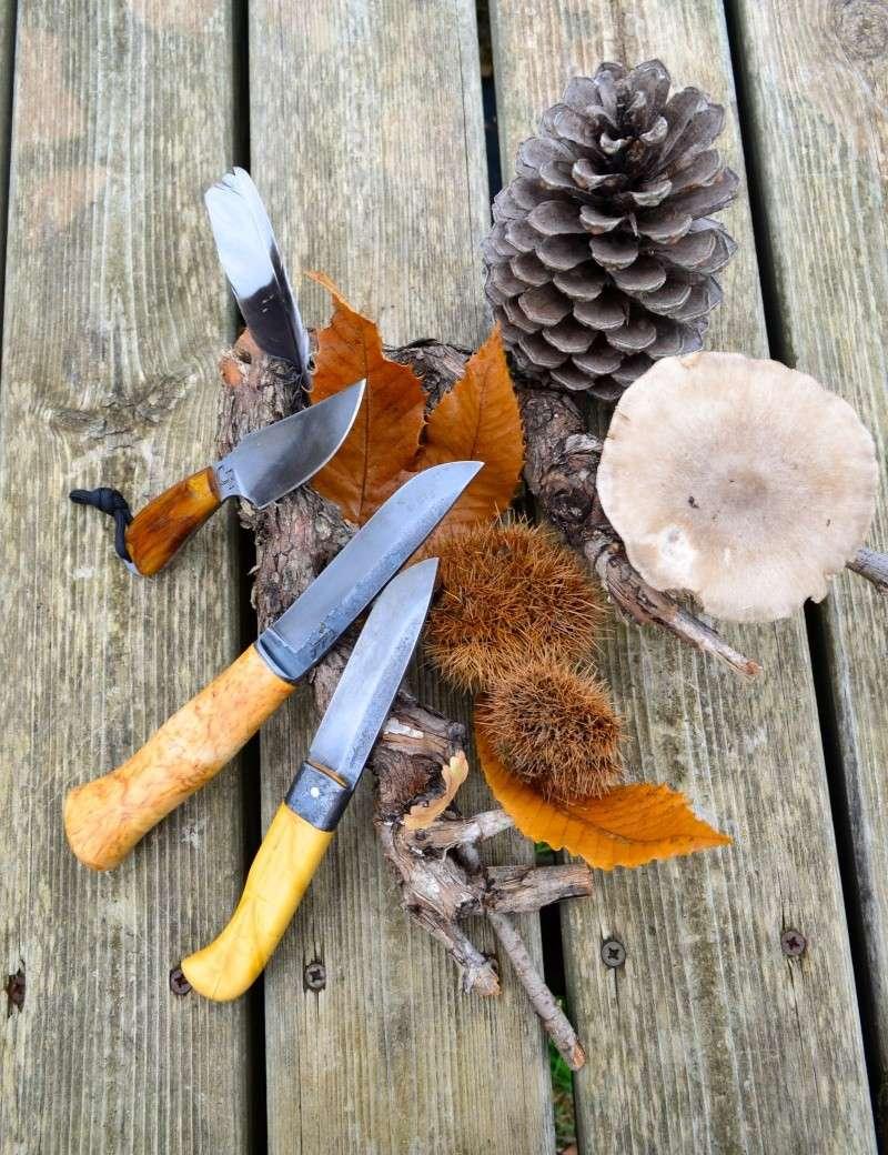 mes couteaux Dsc_0025