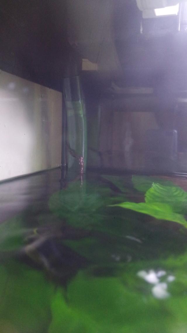 remettre un renfort sur un bac en eau P_202018