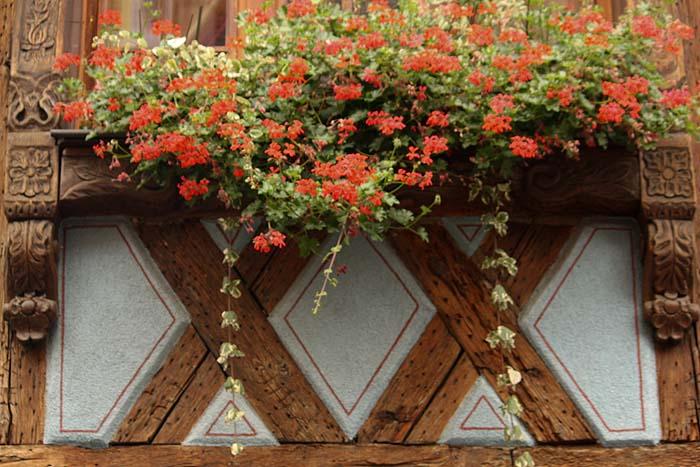 Maisons à colombage en Alsace Kayser18