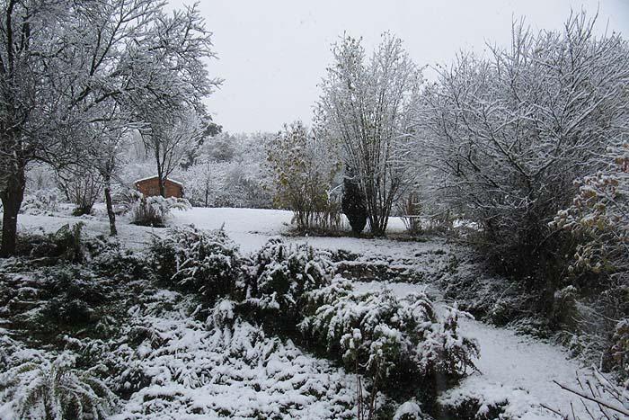 Les couleurs de la Lorraine.. Neige_11