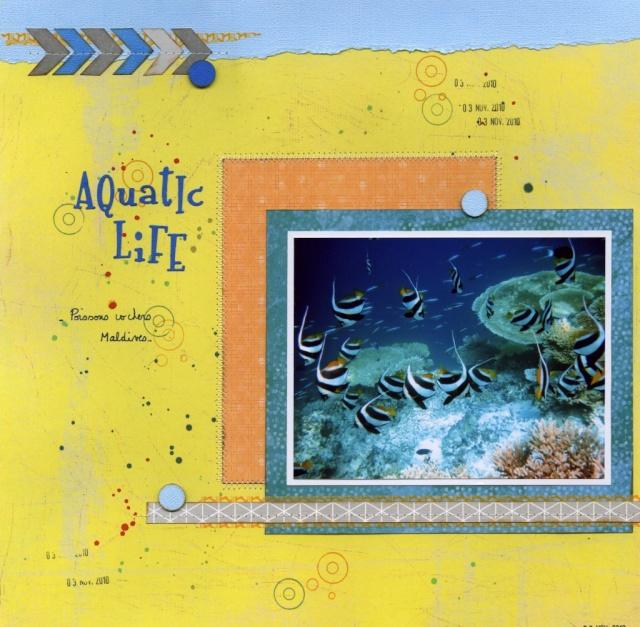 Avril 2014 -Défi #29  - La Danse  - Page 3 Aquati10