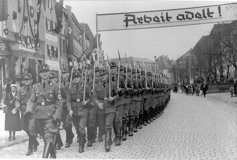 Badge Dietrich Eckarts - Deutschland Erwache 110
