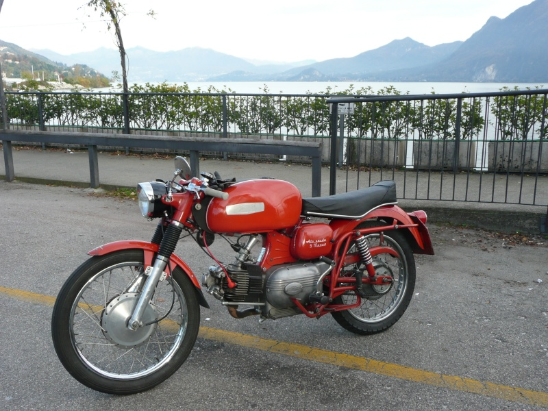 Falcone P1040216