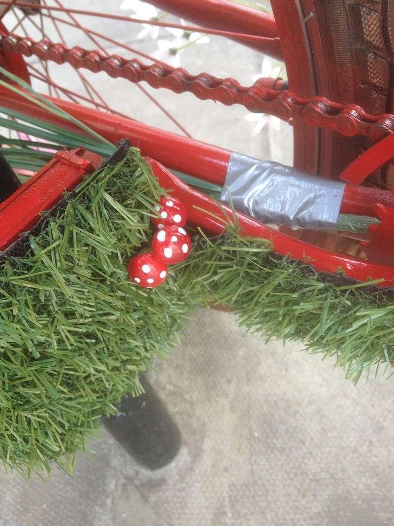An unusual bike  063_bm10