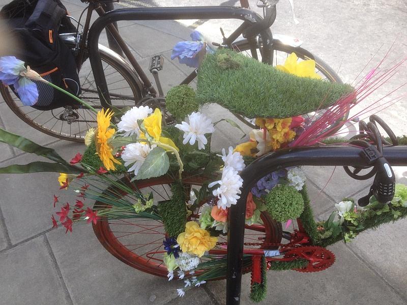 An unusual bike  064_bm10
