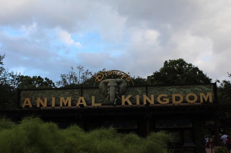 TR d'un voyage fabuleux à Walt Disney World!! - Page 2 Img_3710
