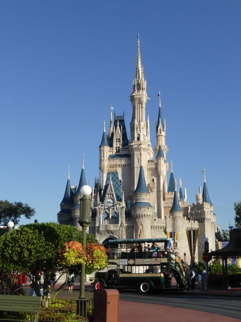 TR d'un voyage fabuleux à Walt Disney World!! - Page 2 P1010316