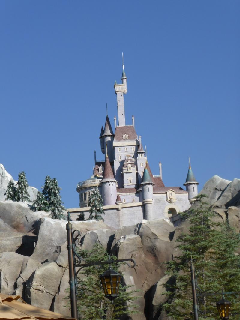 TR d'un voyage fabuleux à Walt Disney World!! - Page 2 P1010319