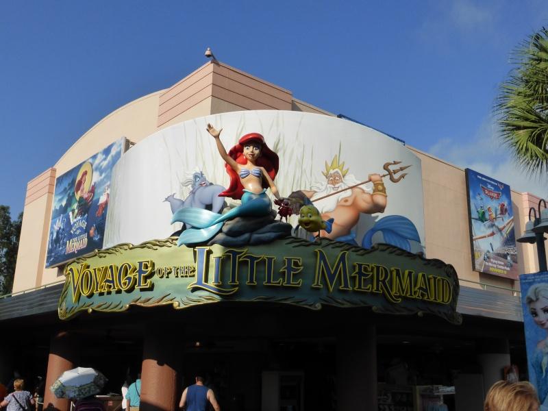TR d'un voyage fabuleux à Walt Disney World!! - Page 2 P1010424