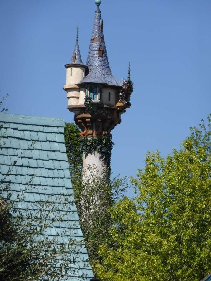TR d'un voyage fabuleux à Walt Disney World!! - Page 2 P1010913