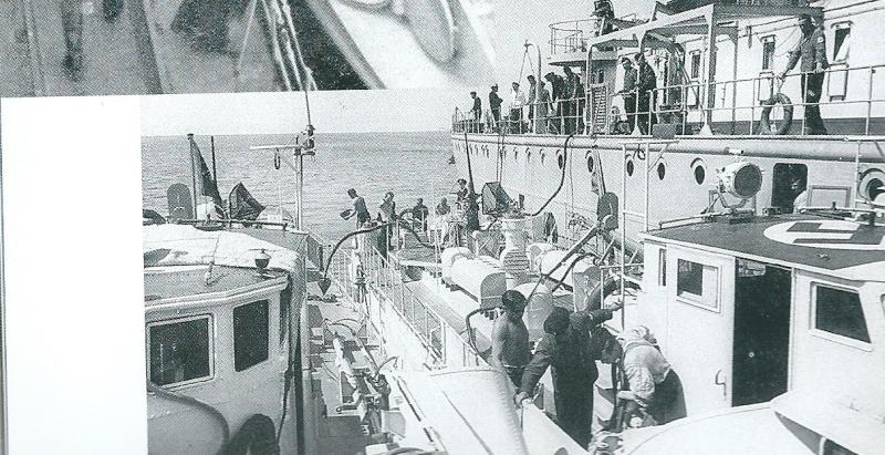 Schnellboot  ( Vedettes lance-torpilles) - Page 10 Numari22