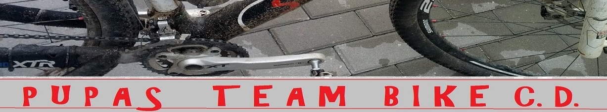 Pupas Team Bike