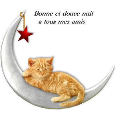 Le Thread du BONJOUR/BONSOIR  les Zanimo's  - Page 4 30446010
