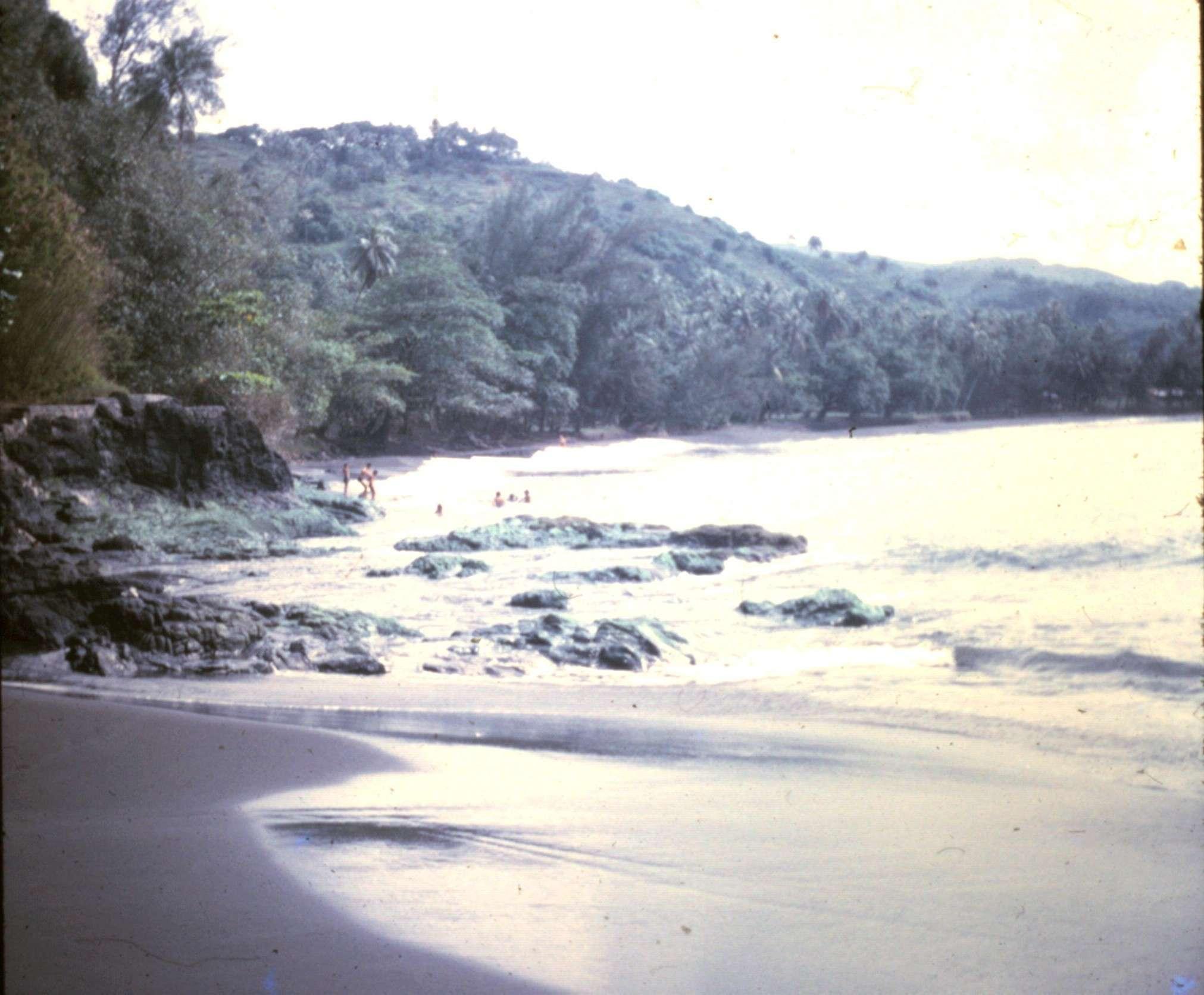 [Tahiti] Il n'y avait pas que le front de mer a Tahiti - Page 5 10-9-220