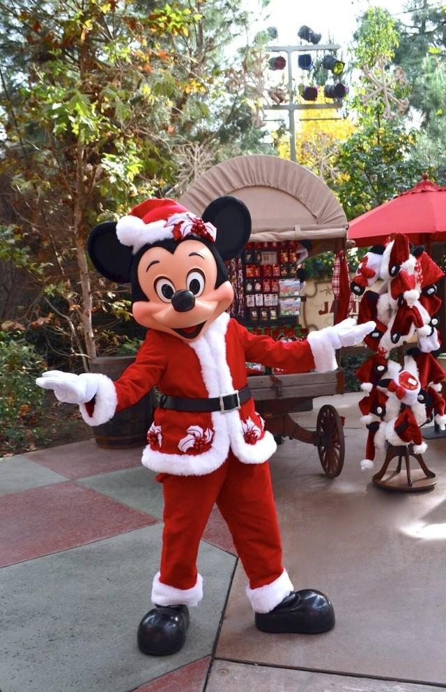 [Disneyland Resort] Christmas Season 2013 (du 12 novembre 2013 au 6 janvier 2014) Img_2916