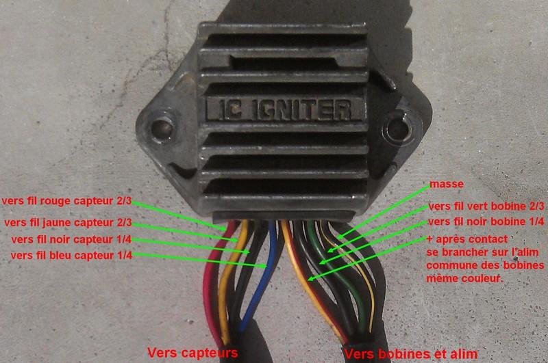 Schéma faisceau électrique simplifié racing Raccor10