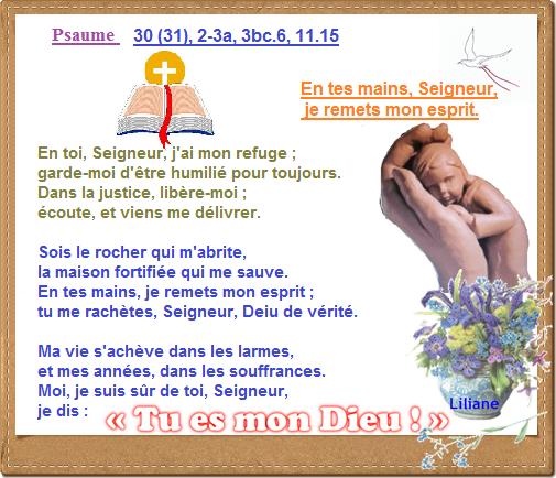 Je vous adore mon Dieu ...(contemplation....prière) Psaume11