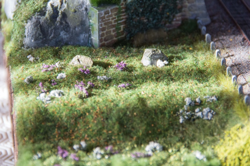 Diorama test  - Page 9 Img_0364