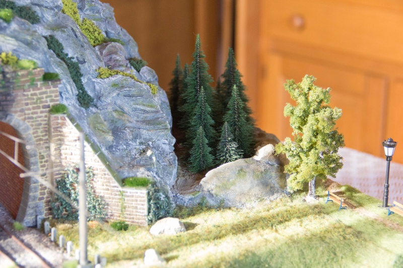 Diorama test  - Page 9 Img_0365