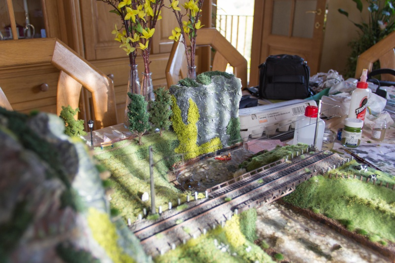 Diorama test  - Page 9 Img_0368