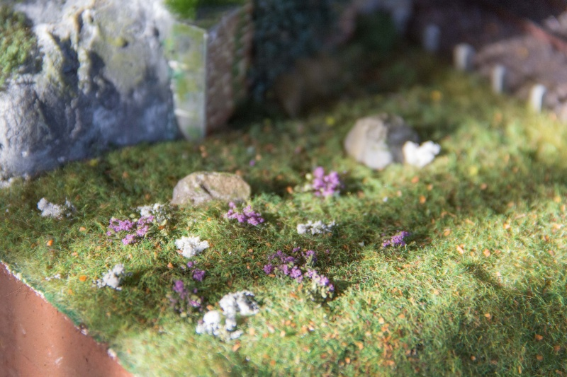 Diorama test  - Page 9 Img_0370