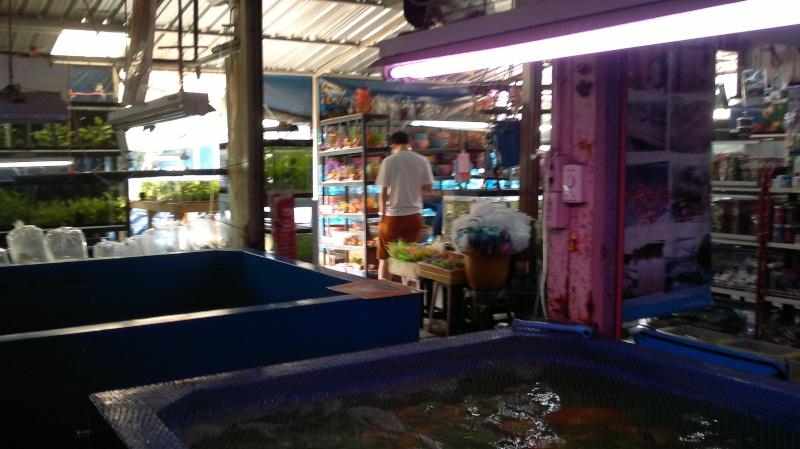 ตลาดปลา 2014-029