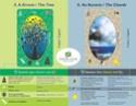 Les différentes versions des  cartes Lenormand - Page 12 Esmera10