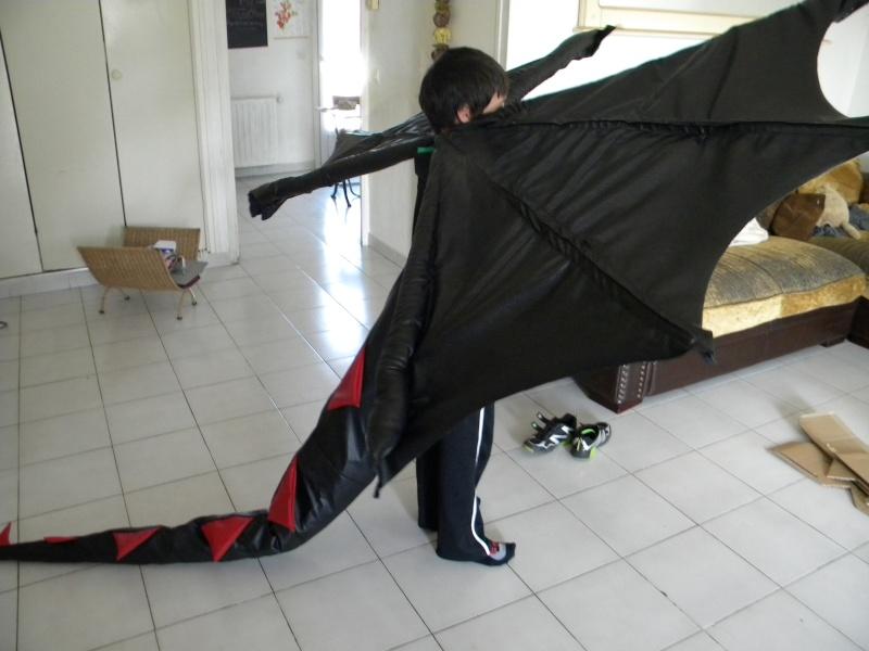 arrière plan, costume Dscn4415