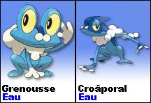 Pokémon X / Pokémon Y Grenou10