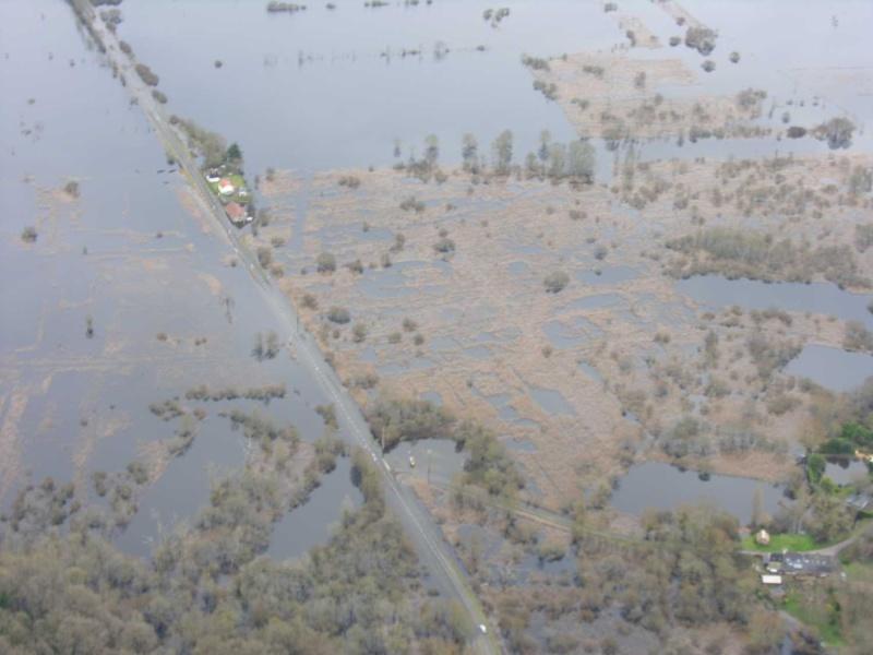 La Brière après les pluies Dscn2316