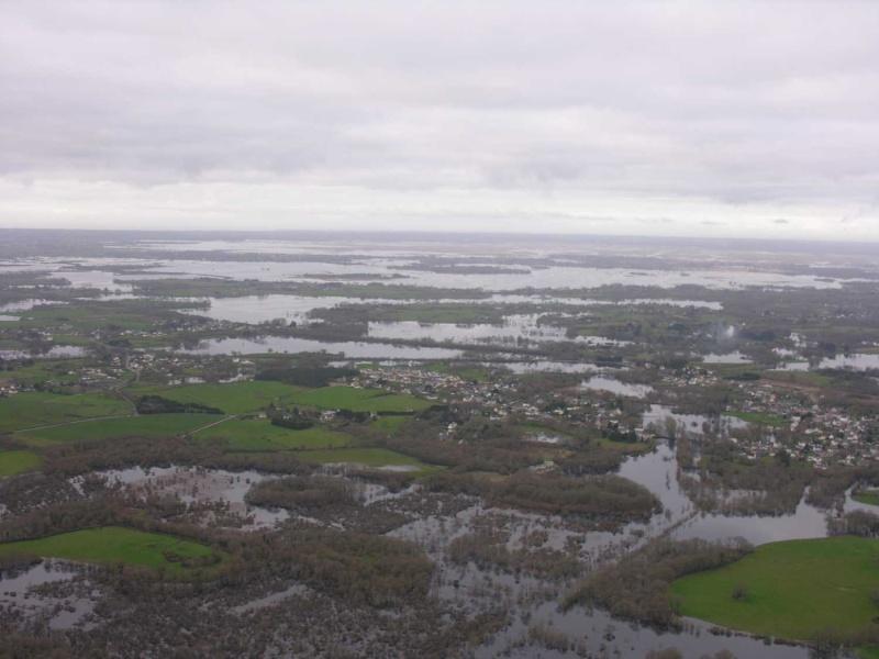 La Brière après les pluies Dscn2317