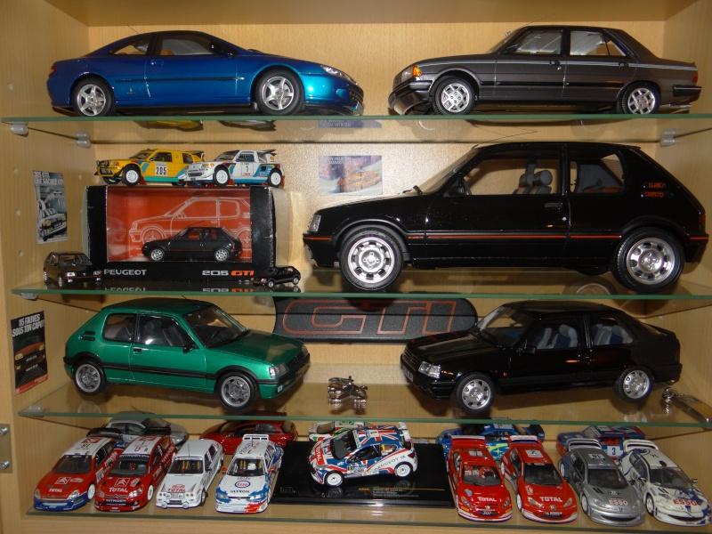 Mes titines miniatures Dsc02514